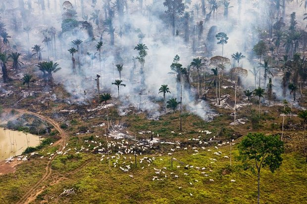 20-shocking-photos-of-humans-slowly-destroying-planet-earth-9.jpg
