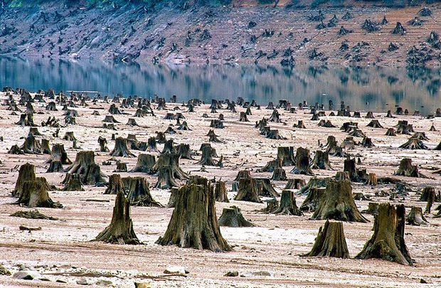20-shocking-photos-of-humans-slowly-destroying-planet-earth-12.jpg